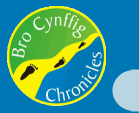Bro Cynffig Chronicles logo